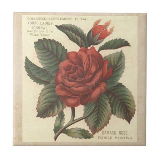 Teja/Trivet del rosa rojo del damasco del vintage