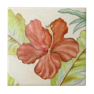 Teja tropical del hibisco