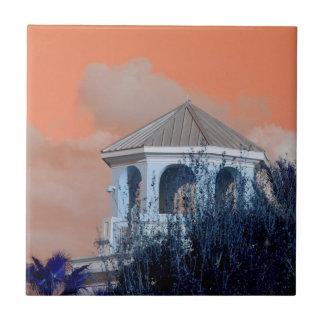 tejado del chapitel contra el cielo y los árboles tejas  cerámicas