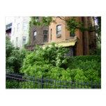 Tejado y jardín amarillos postal