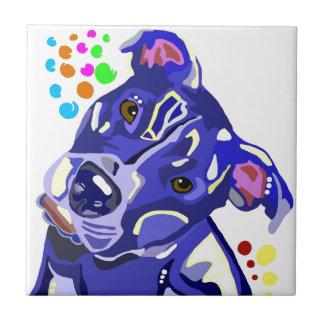 Tejas azules de Terrier de pitbull
