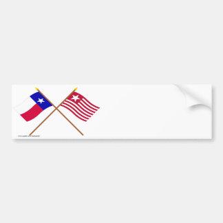 Tejas cruzado y banderas largas de la expedición pegatina para auto