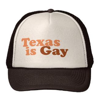 Tejas es gay gorra