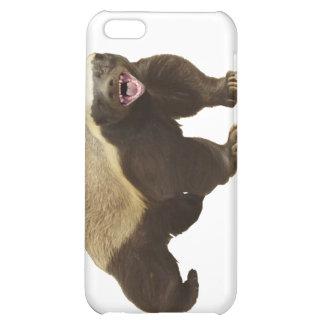 Tejón de miel - caso ADAPTABLE del iPhone 4/4s