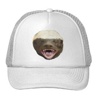 Tejón de miel gorras
