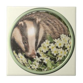 Tejón en el banco de la primavera azulejo ceramica