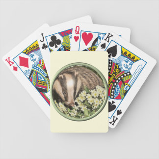 Tejón en el banco de la primavera barajas de cartas