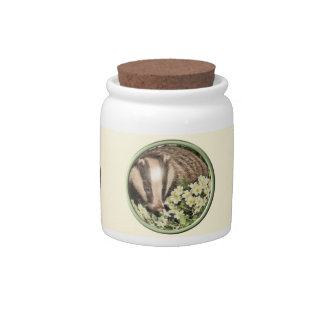 Tejón en el banco de la primavera jarras para caramelos