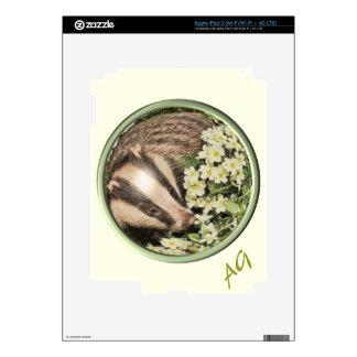 Tejón en el banco de la primavera iPad 3 skin