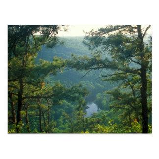 Tekoa Mountain Postcard