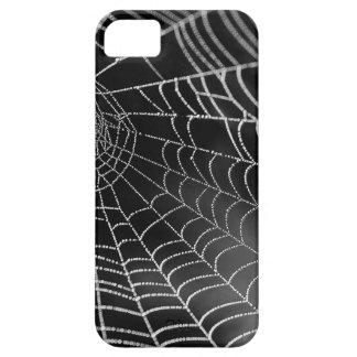 Tela de araña con las gotas del agua iPhone 5 carcasas