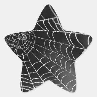 Tela de araña con las gotas del agua pegatina en forma de estrella
