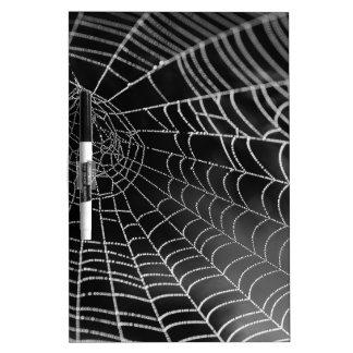 Tela de araña con las gotas del agua pizarras blancas