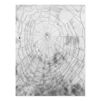 Tela de araña postales