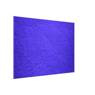 tela de la fotografía digital de los fondos del pa lienzo envuelto para galerías