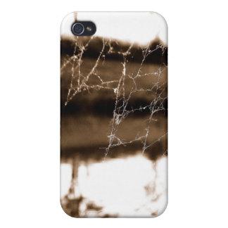 Telaraña borrosa iPhone 4 coberturas