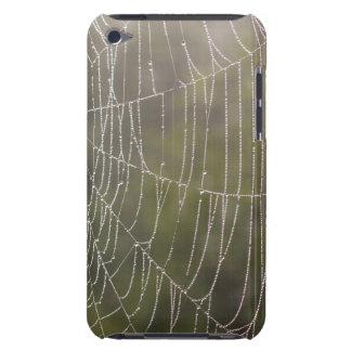 Telaraña de la araña barely there iPod cárcasas