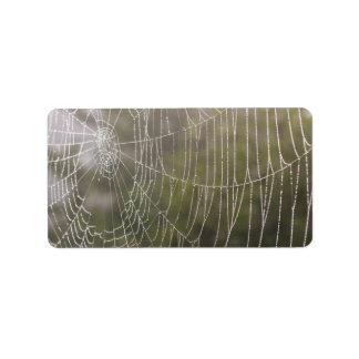 Telaraña de la araña etiqueta de dirección