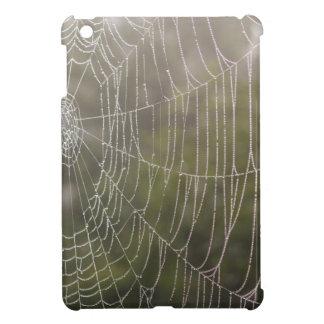 Telaraña de la araña