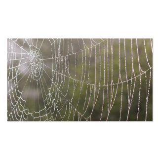 Telaraña de la araña tarjetas de visita