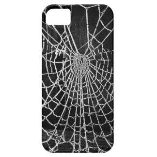 Telaraña iPhone 5 Case-Mate Funda