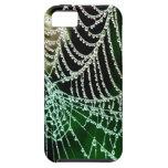 telaraña y paz y calma de la gota de rocío iPhone 5 Case-Mate protector