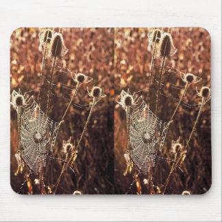 Telarañas en cardo alfombrilla de ratones