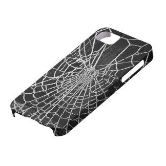 Telarañas iPhone 5 Cárcasas