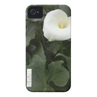 Teléfono de Cala Lilly Case-Mate iPhone 4 Cárcasa