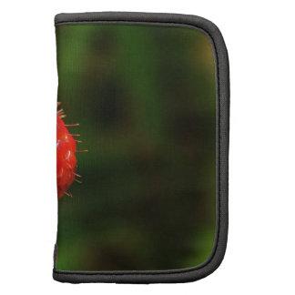 Teléfono de la frambuesa/caso del iPad Organizador