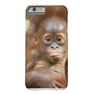 Teléfono del plátano funda de iPhone 6 barely there