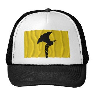 Telemark waving flag hats