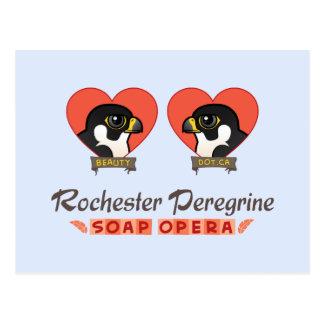 Telenovela del peregrino de Rochester Postales