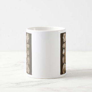 Teleostei Classic White Coffee Mug