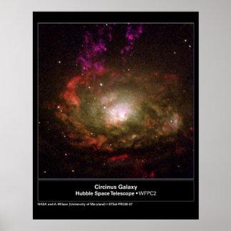Telescopio de Hubble de la galaxia de Circinus Poster