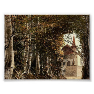 Tell's Chapel, the lane through the woods near Kus Posters