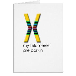 Telomeres Card