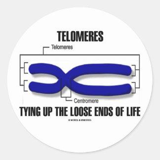 Telomeres que ata encima de finales flojos de la etiquetas redondas