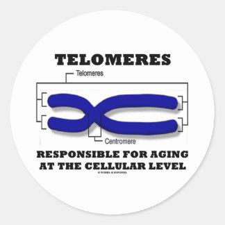 Telomeres responsable del envejecer en el nivel pegatinas redondas
