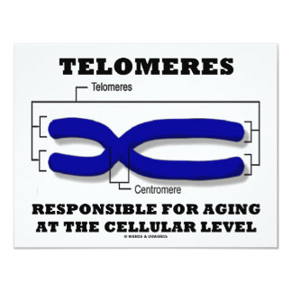 Telomeres Responsible For Aging At Cellular Level 4.25x5.5 Paper Invitation Card