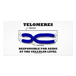 Telomeres Responsible For Aging At Cellular Level Personalized Photo Card