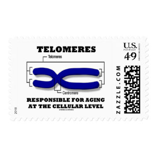 Telomeres Responsible For Aging At Cellular Level Postage Stamp