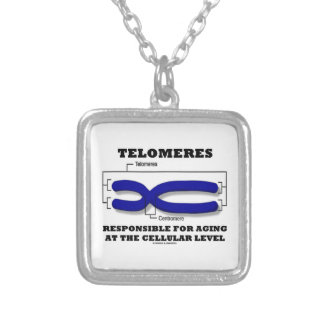 Telomeres Responsible For Aging At Cellular Level Silver Plated Necklace