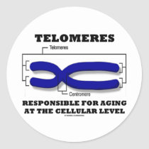 Telomeres Responsible For Aging At Cellular Level Stickers