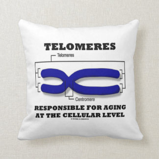 Telomeres Responsible For Aging At Cellular Level Throw Pillow