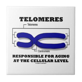 Telomeres Responsible For Aging At Cellular Level Tile