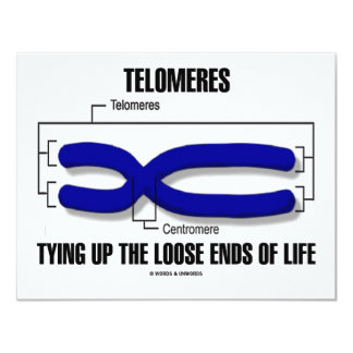Telomeres Tying Up The Loose Ends Of Life 4.25x5.5 Paper Invitation Card