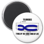 Telomeres Tying Up The Loose Ends Of Life Refrigerator Magnets