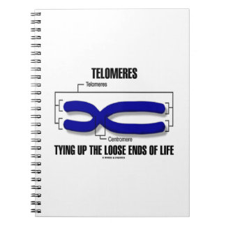 Telomeres Tying Up The Loose Ends Of Life Notebook