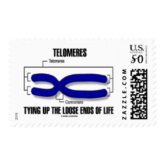 Telomeres Tying Up The Loose Ends Of Life Postage